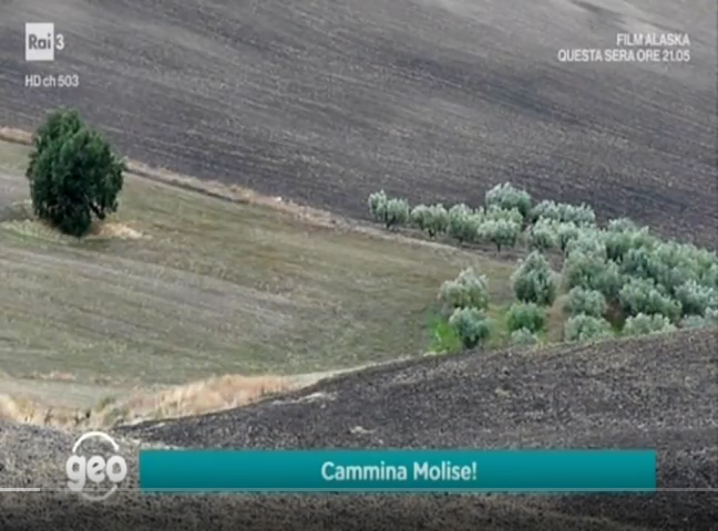 Screenshot-2018-2-28-cammina-Molise-ospite-di-Geo-YouTube7